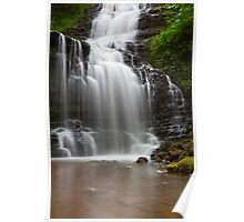 Scaleber Force. Poster