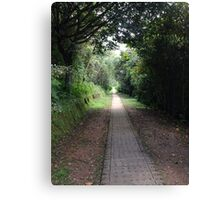New path everyday - Colombia Canvas Print