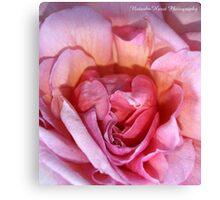 Femininity (Rose) Canvas Print