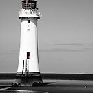Lighthouse at the Wirral by Evette Lisle