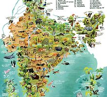 The Wildlife Map of India by rohanchak