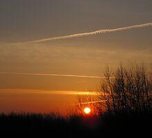 Red Sunrise by Kathi Arnell