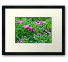 Flowery Meadow Framed Print