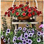 My Summer Garden by Julesrules