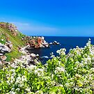 white spring on the coast by plamenx