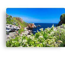 white spring on the coast Canvas Print