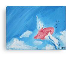 Stratosphere Flight Canvas Print