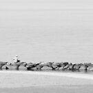 Gone Fishing by John Ayo