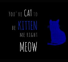 You've Cat to be Kitten me Right Meow by Robert Flanary