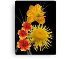 Golden colours Canvas Print