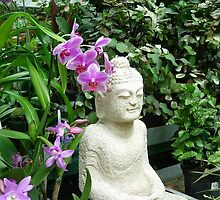 Buddha in the Garden by JMSDreamer