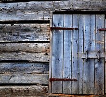 Barn Door by Sheryl Gerhard