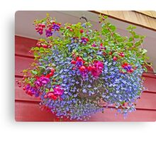 A colourful Hanging Basket Canvas Print