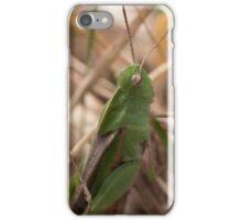 Green Little Hopper iPhone Case/Skin