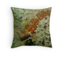 Goby Goodness Throw Pillow