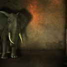 Elephant in the Room by Shanina Conway