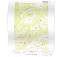 USGS Topo Map Oregon Brown Creek 279155 1974 24000 Poster