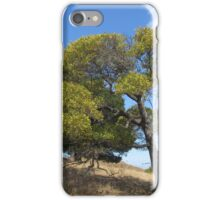 Tree On A Hill iPhone Case/Skin