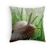 snail in the grass Throw Pillow