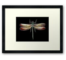 Medicine Wheel Totem Animals by Liane Pinel- Dragonfly Framed Print