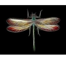 Medicine Wheel Totem Animals by Liane Pinel- Dragonfly Photographic Print