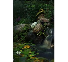 Hidden Glade Photographic Print