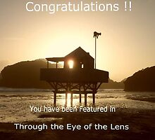 Banner Challenge for Through the Eye of the Lens by chrissy mitchell