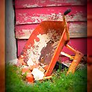 WheelBarrow  by Kimberly Darby