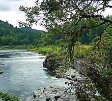 Colliding Rivers Of Oregon by 2HivelysArt