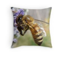 bee on a lavender flower Throw Pillow