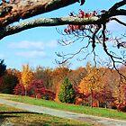 autumn trees by ANNABEL   S. ALENTON
