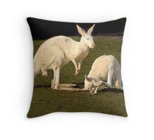 White Kangaroos Throw Pillow