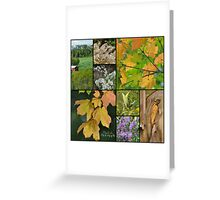 Fall Flair Collage Greeting Card