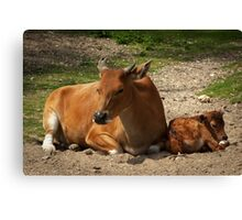 Mom and the baby Canvas Print