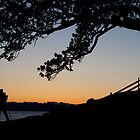 Sunrise on Sydney Harbour by Graham Lawrence