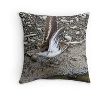 Common Sandpiper Throw Pillow