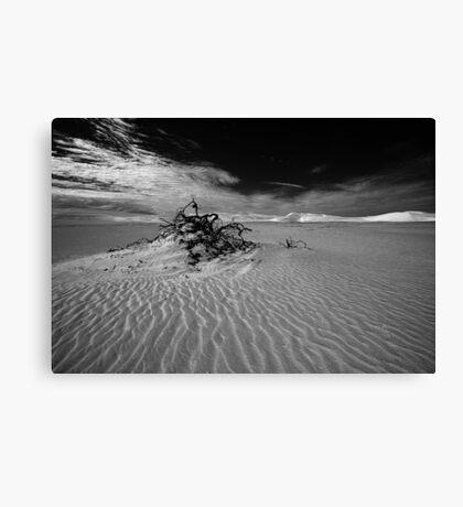 Desolate dunes, Australia Canvas Print