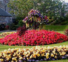 Flowerbed in Pitlochry, Scotland by ElsT