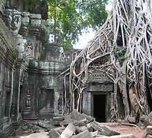Angkor Wat - Tomb rader was shot here by machka