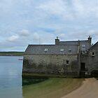 Lerwick Lodberries, Shetland Isles by Lynn Bolt