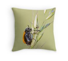 coleottero Throw Pillow
