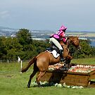 Jumping over food! panoramic view of the Firth of Forth by rosie320d