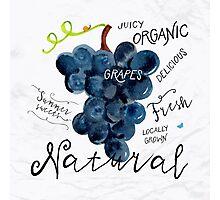 Watercolor grapes Photographic Print