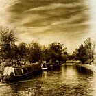 Narrowboats on the Shroppie by Aggpup