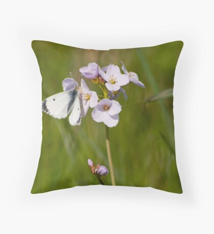 Orange Tip Butterfly on Cukoo flower Throw Pillow