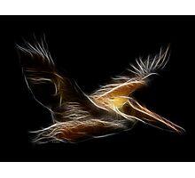 Medicine Wheel Totem Animals by Liane Pinel- Pelican Photographic Print
