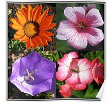 Pretty Foursome - Sunlit Summer Flowers Collage Poster