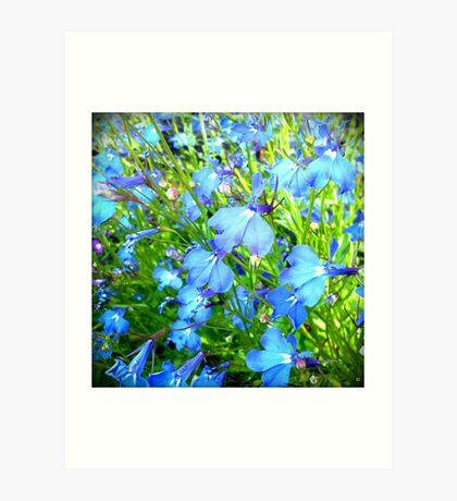 ...something blue Art Print