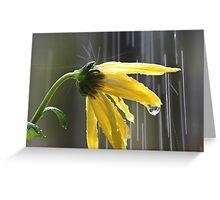Wet flower Greeting Card