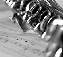 Clarinet Closeup by Lauren Neely